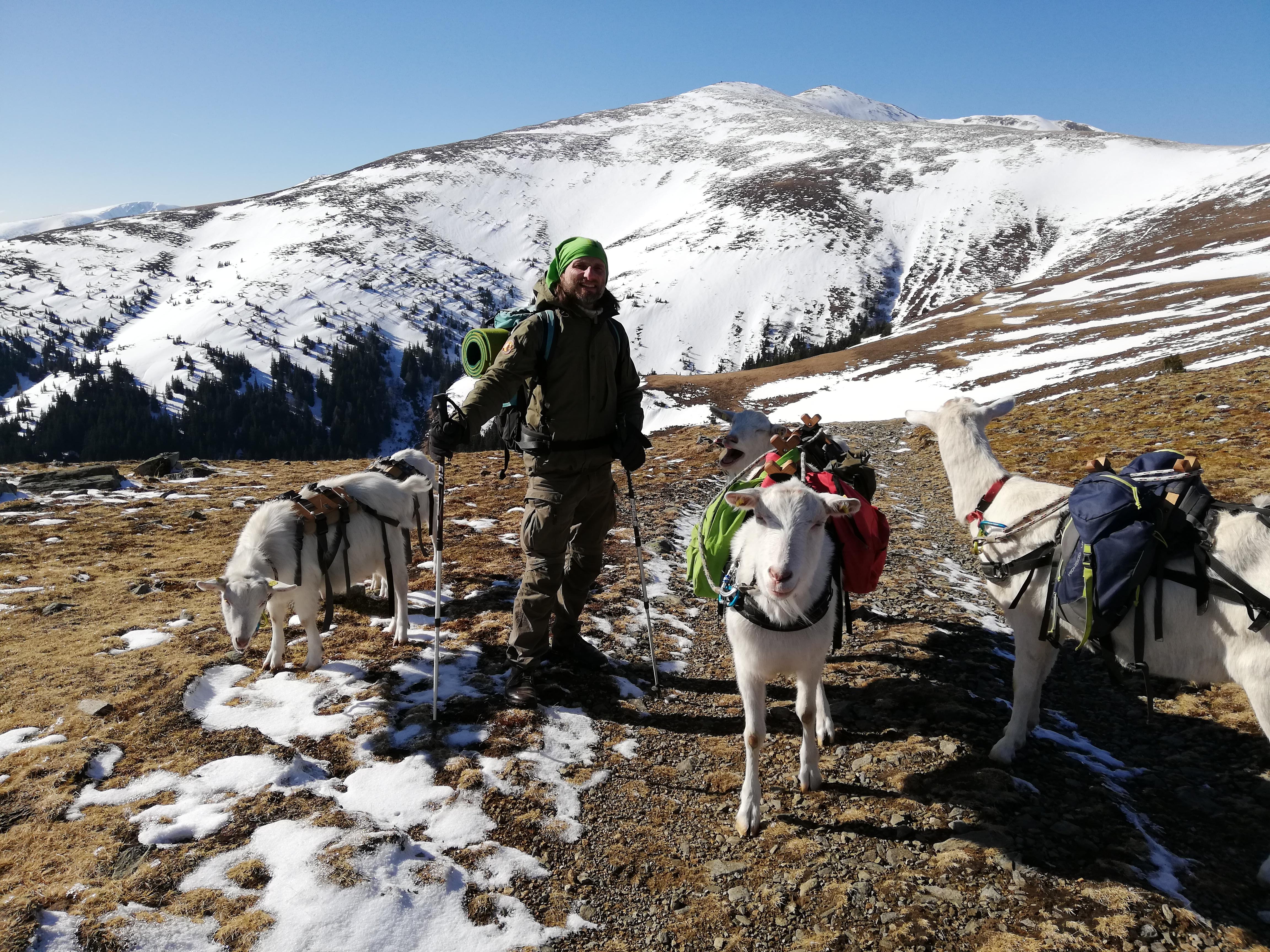 Ziegenwandern, Seckauer Tauern