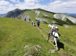 Ziegenwandern, Aflenzer Starizen