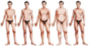 male body types.jpg
