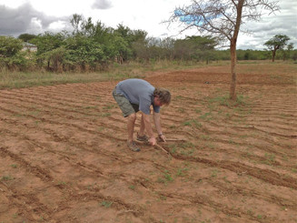 College partners with South West Ag on life-changing agriculture program in rural Zambia