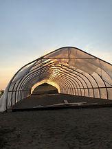 greenhousepic_edited.jpg