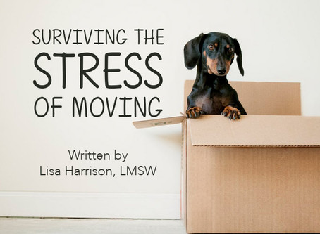 Surviving the Stress of Moving