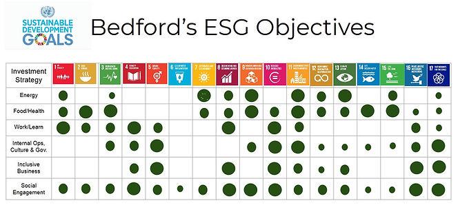 Bedford SDG chart.jpg