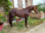 gancho 2.jpg
