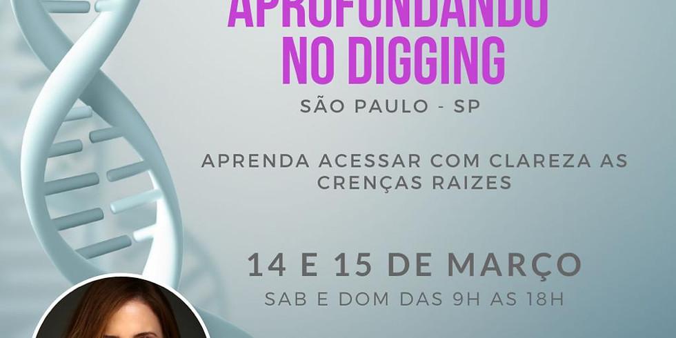 Aprofundando o Digging - São Paulo