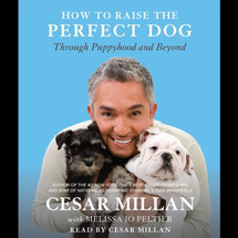 CESAR MILLAN              HOW TO RAISE THE PERFECT DOG