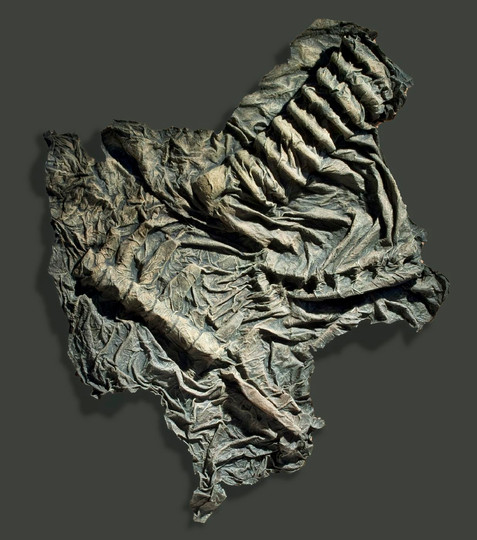 Jawless Series: Reverse Fossil 3