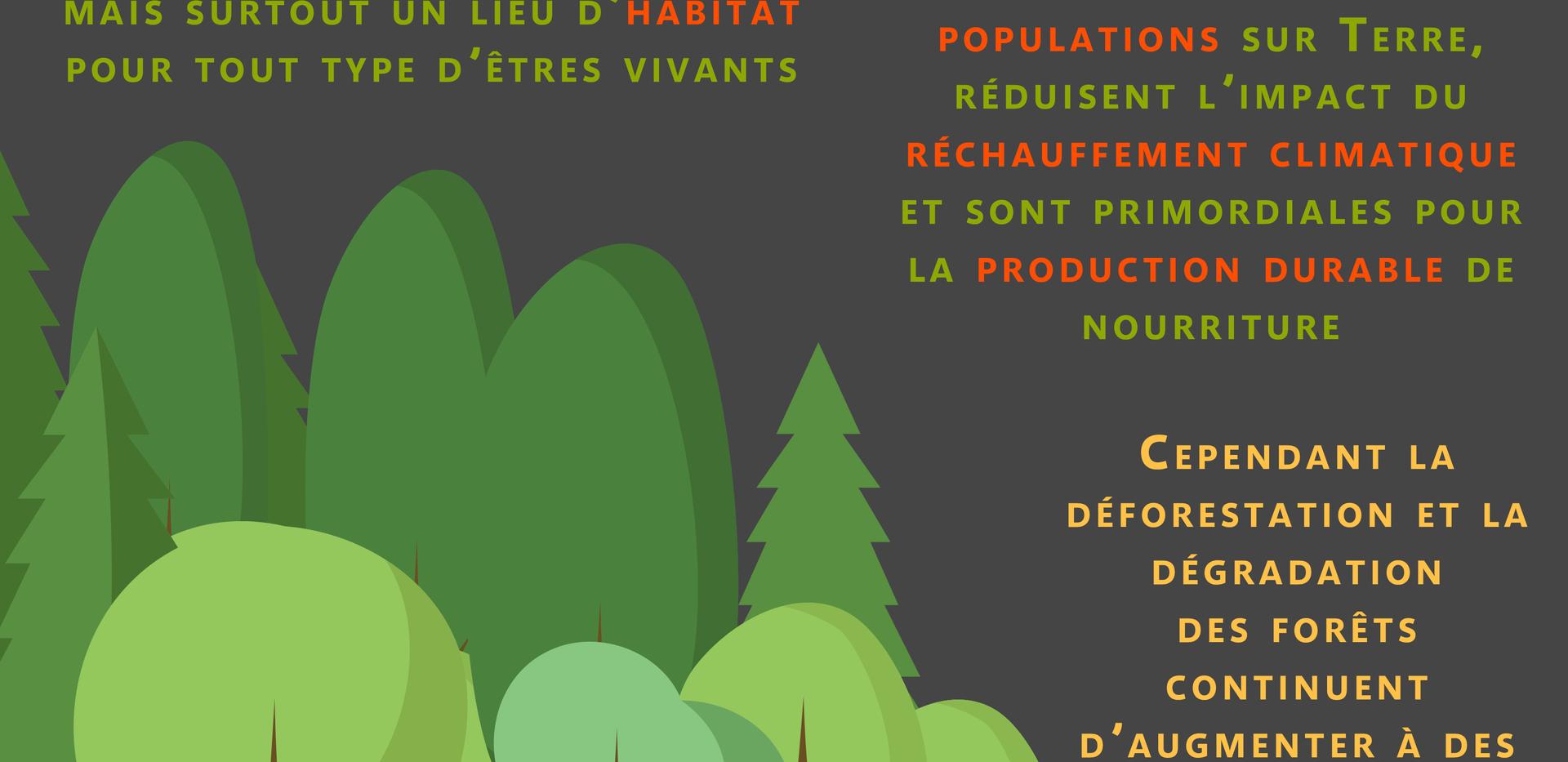 Déforestation_constats.png