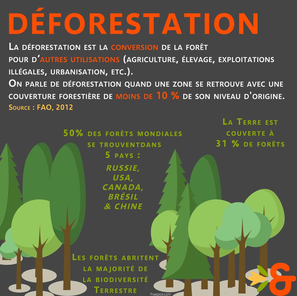Déforestation.png
