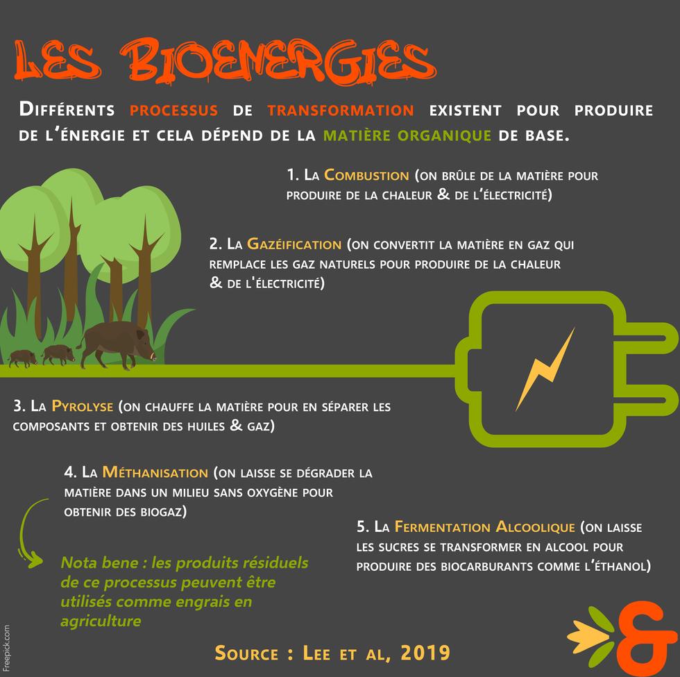 3. Bioénergies définition.png