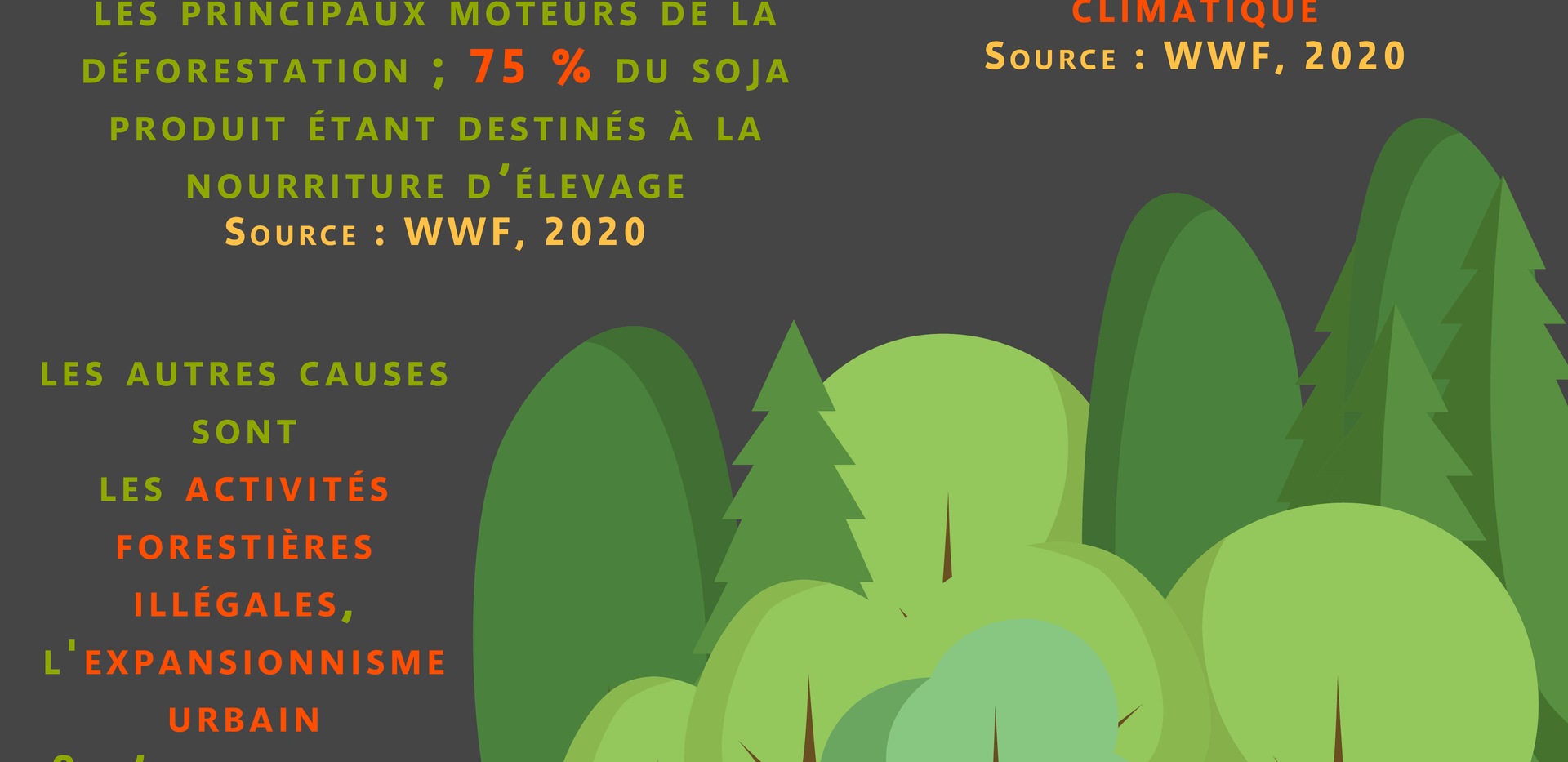 Déforestation_causes.png