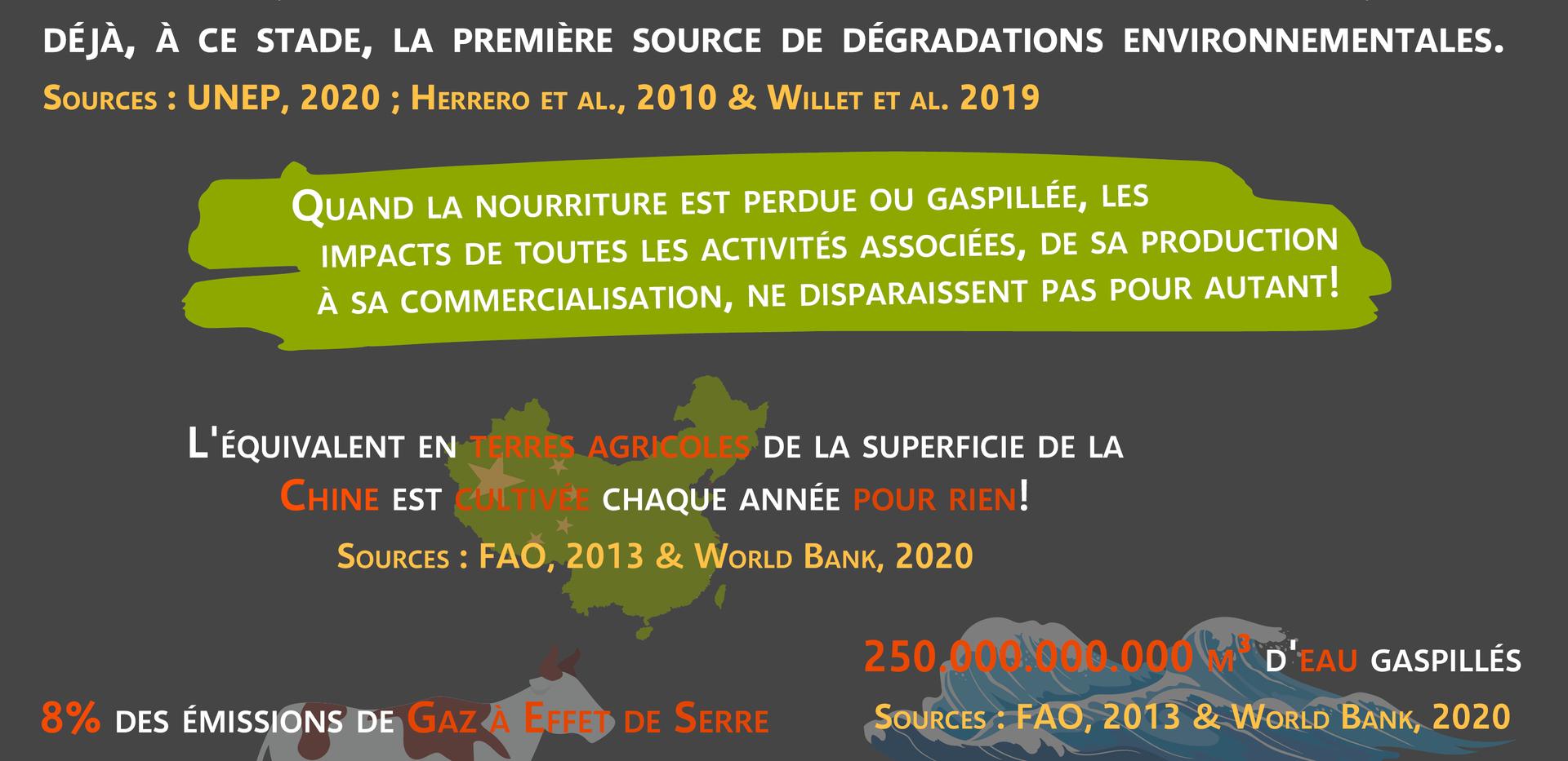 6. Impact Environnemental.png