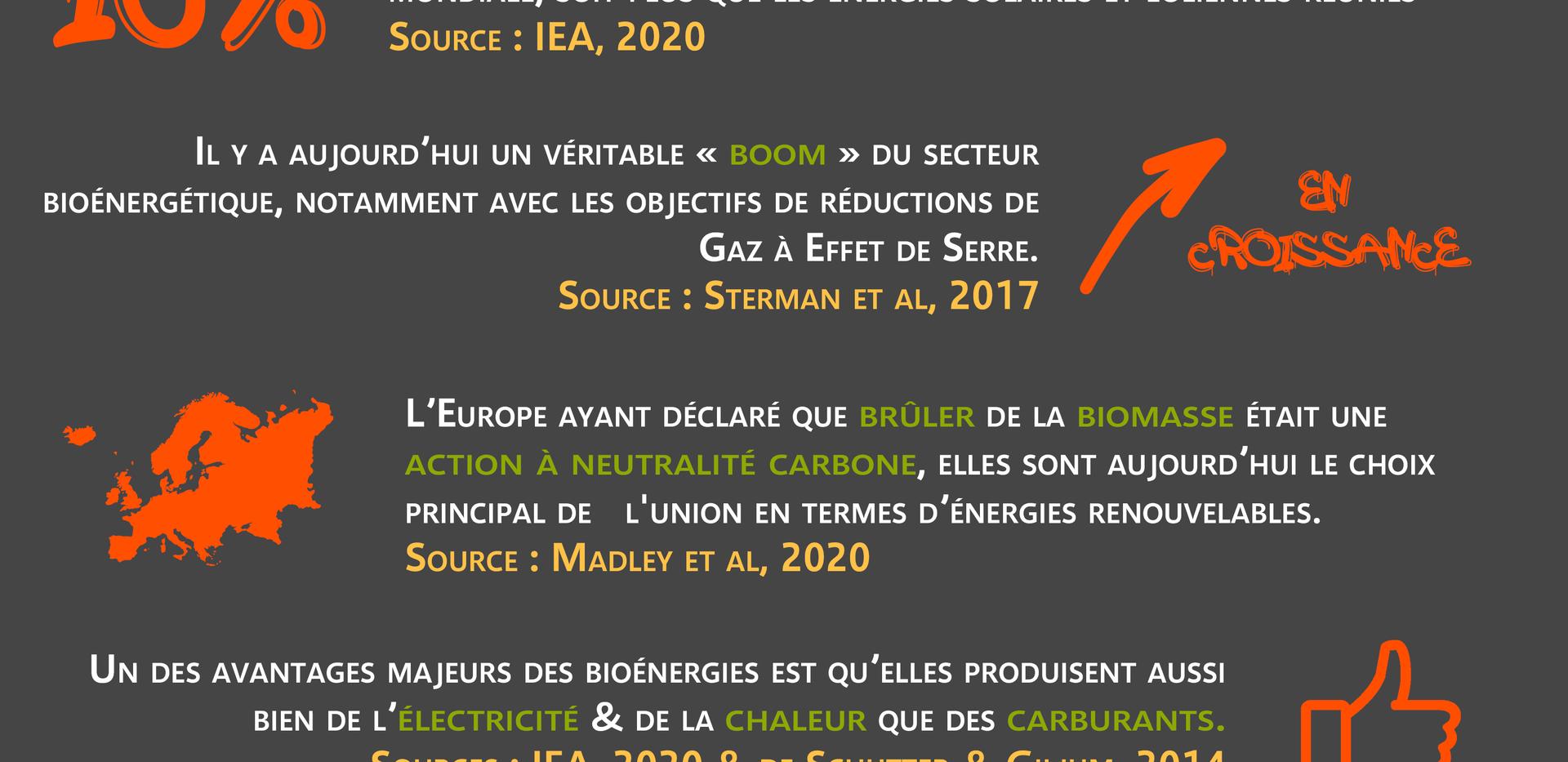 4. Bioénergies contexte & importance.png