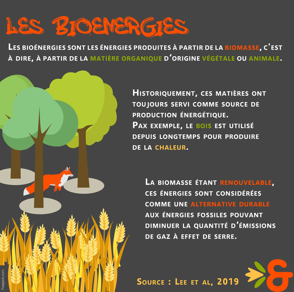 2. Bioénergies définition.png
