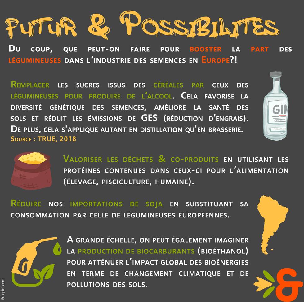 7. Le futur.png