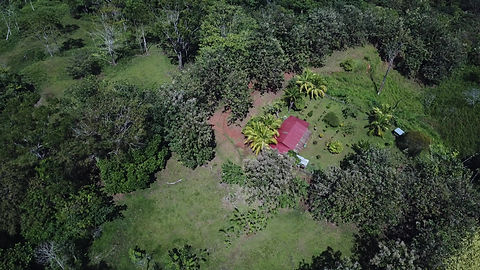 Aerial view of part of the farm