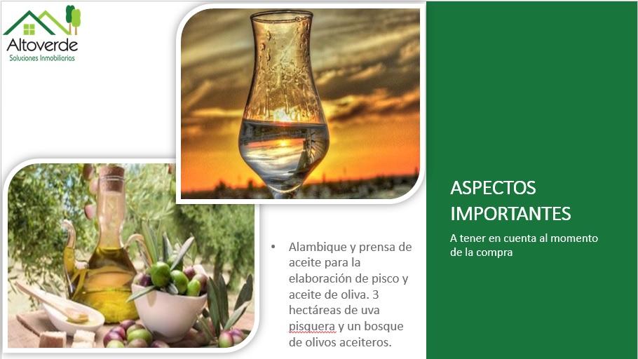 Alambique, Aceite de Oliva, Pisco