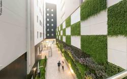 Boulevard Jardines verticales