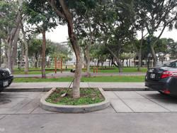 Parque al frente