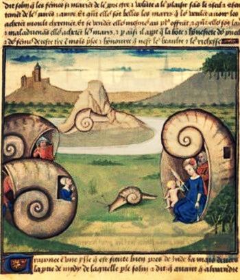 Bibliothèque nationale de France, Français 22971, f. 60v (Sri Lanka). Secrets de l'histoire naturelle. Cognac, c1480-1485. Artist_ Robinet Testard