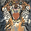 Thumbnail: Jeans Bl11 Cropped Disegnato Tiger