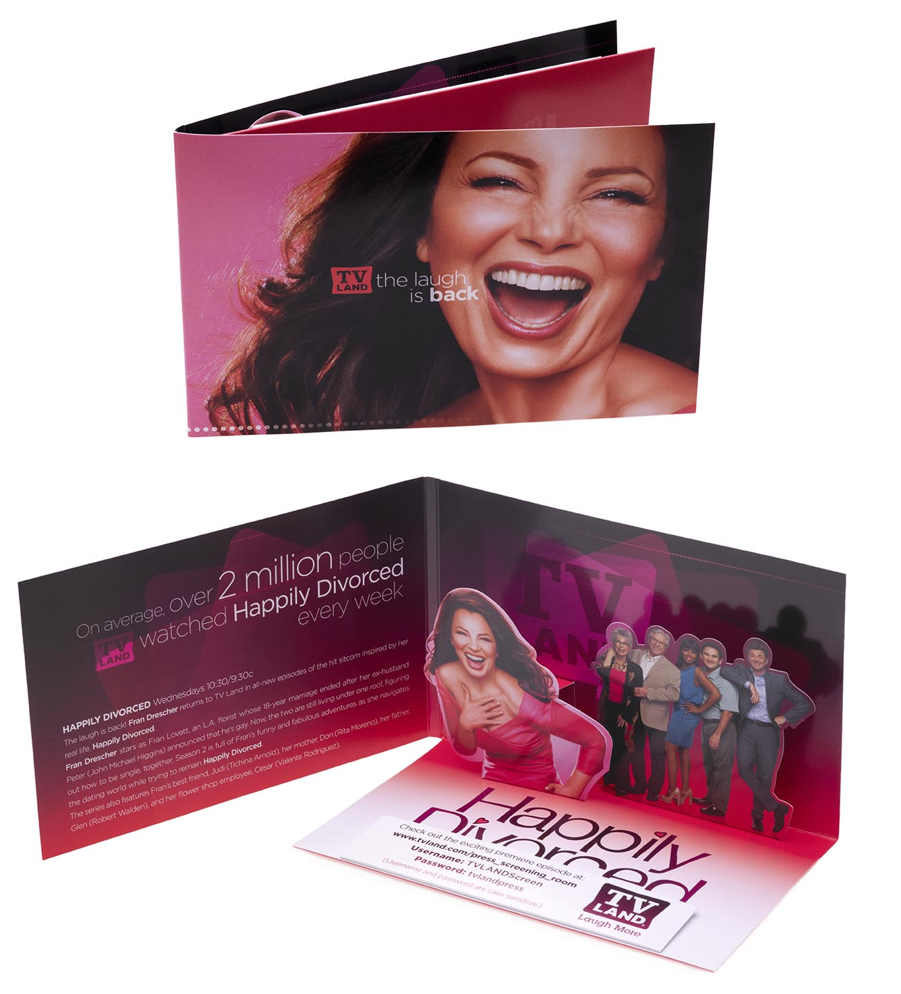 Happily Divorced press kit