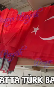 Sopalı Türk Bayrağı.webp