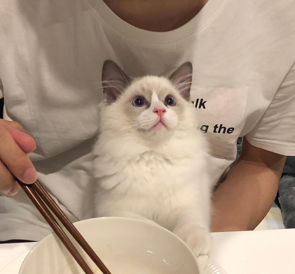 WeChat Image_20190410103944.jpg