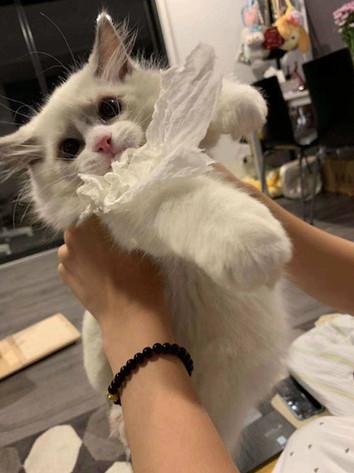 WeChat Image_20190410103958.jpg