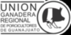 Logo UGRPG Contorno Blanco.png