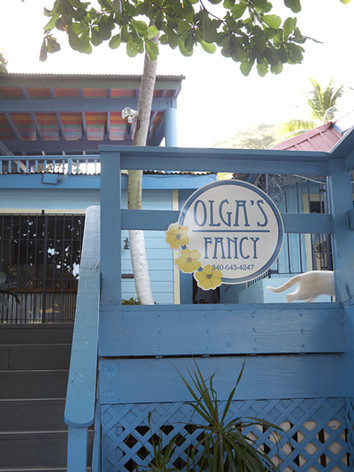 Welcome to Olga's Fancy Inn in the historic Frenchtown neighborhood of St. Thomas, USVI. The hotel is a stone's throw to downtown Charlotte Amalie and equally short distance to our airport. While located in an eclectic, colorful neighborhood of shops, fine dining and entertainment, we can also boast a bit of seclusion. Olga's Fancy is situated directly on a hillside along the waterfront and offers fabulous views of Hassel and Water Island all the way to St. Croix in the distance,as well as expansive views of the bustling St. Thomas harbor.  As our rooms are nestled along the hillside, there are some stairs.Each landing offers a respite if needed, such as our covered terrace and our salt water pool.  Olga's Fancy is owned and operated by the Giovan family. Recently, the Giovans set out to rehab and renovate the Inn. The result is a charming and attractive Inn with bright, clean and comfortable rooms.