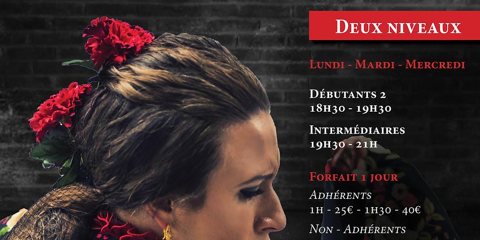 Stage de danse Irene La Sentio