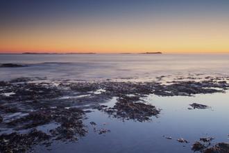 Farne Islands dawn