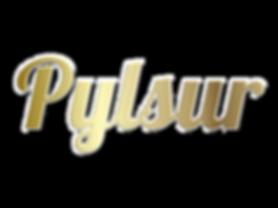 Pylsur.png
