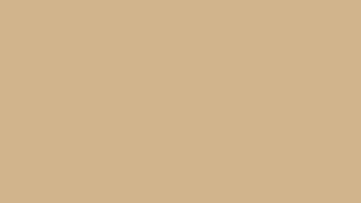 2560x1440-tan-solid-color-background.jpg