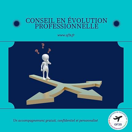 Conseil en evolution professionnelle.png