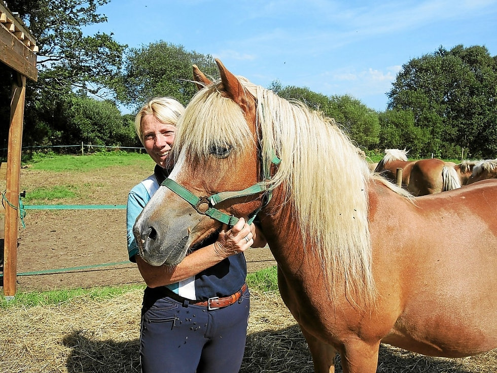 isabelle et chevaux.jpg