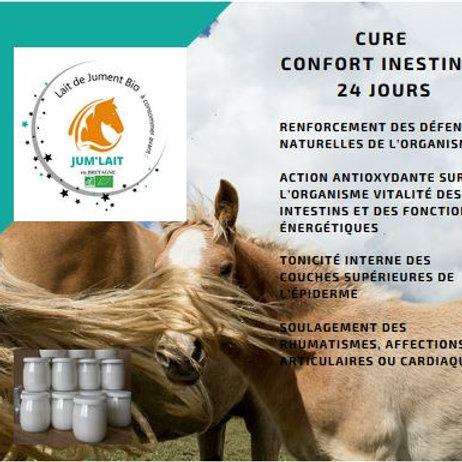 Cure Confort intestinale 24 jours
