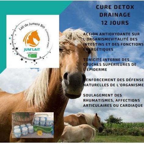 Cure Détox Drainage 12 jours