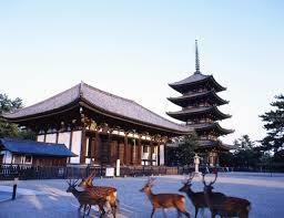 Kofukuji Temple.jpg