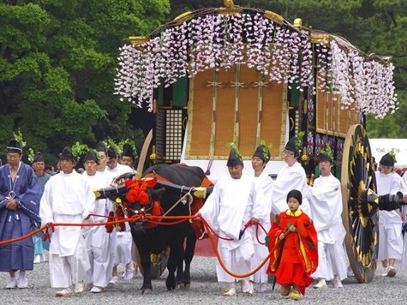 Aoi Festival May 15.jpg