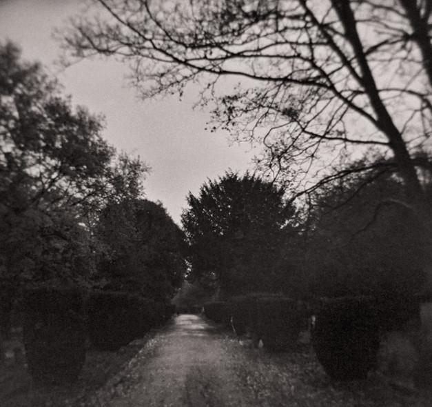 Twilight II