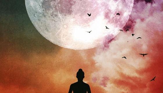 full moon (1).jpg