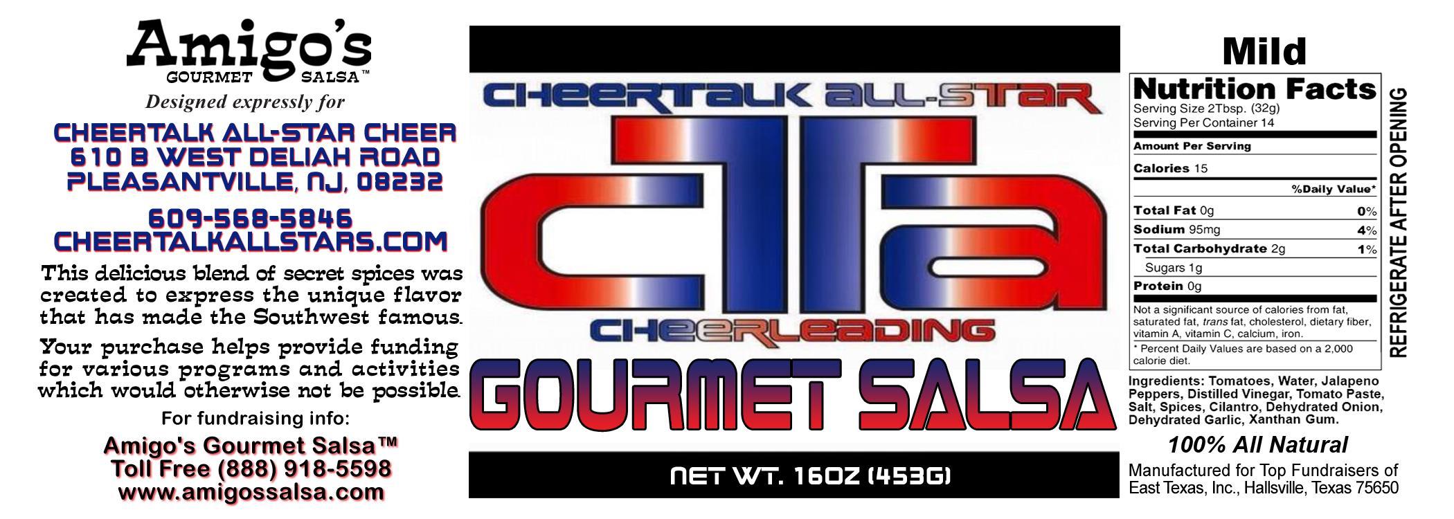 Cheer Talk All Star Cheer MILD.jpg