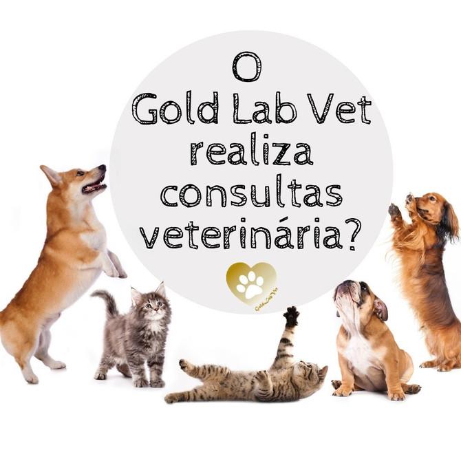O Gold Lab Vet realiza consultas veterinária?