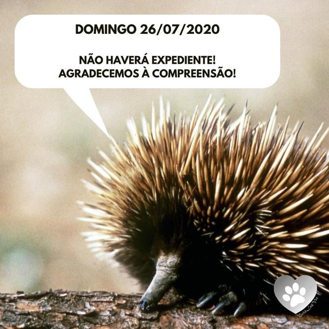Domingo 26/07/2020 - Não haverá expediente