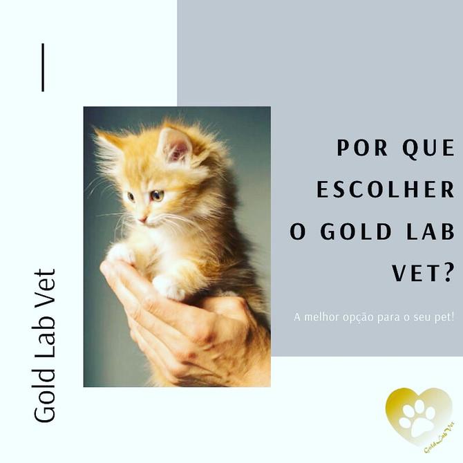 Por que escolher o Gold Lab Vet?