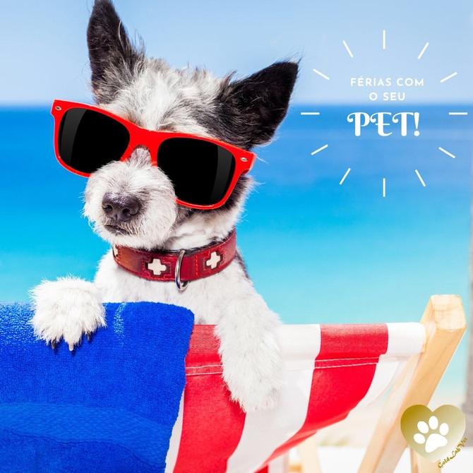 Saia de férias com o seu cão!