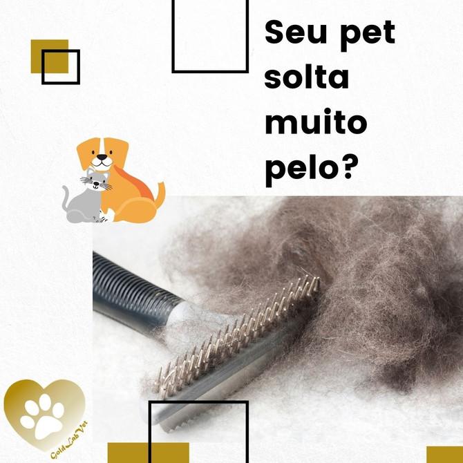 Seu Pet solta muito pelo?