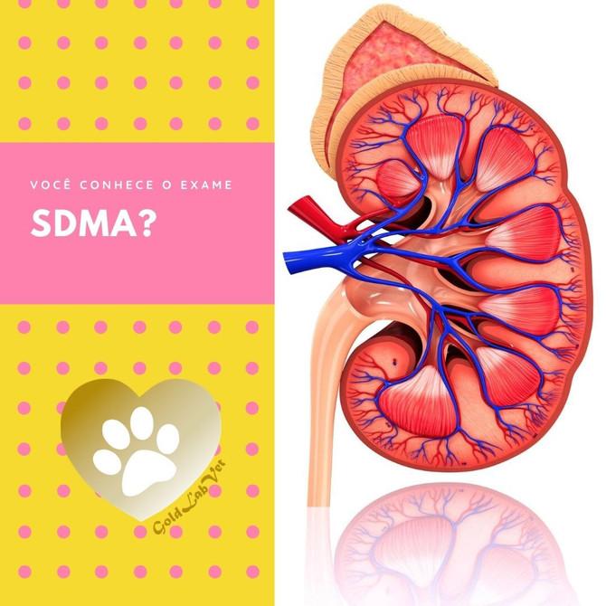 Você conhece o SDMA?